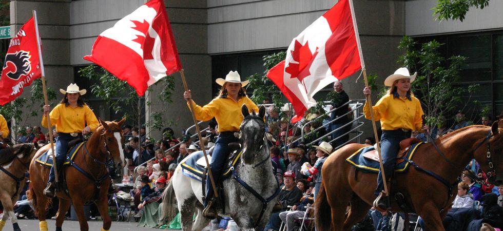 Calgary Horses